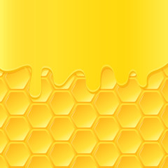 Vector background with honeycomb and flowing honey