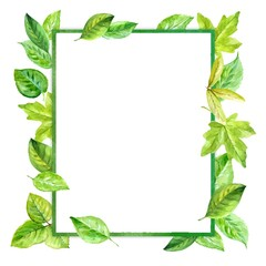square frame made of various leaves in watercolor.
