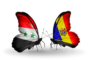 Two butterflies with flags Syria and Moldova