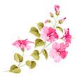 Flower hibiscus - 78456308