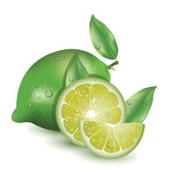 realistic lemon
