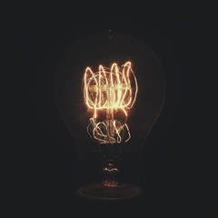 Incandescent light bulb at dark