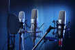 studio microphone - 78460711