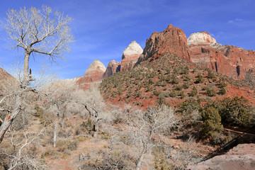 Red rock mountain landscape, Zion National Park, Utah