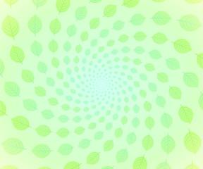 新緑 スパイラル1