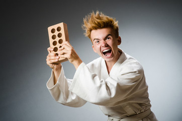 Funny karate fighter with clay brick