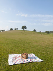 Picnic basket and blanket in a treelined meadow