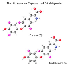 Structural chemical model of  thyroid hormones