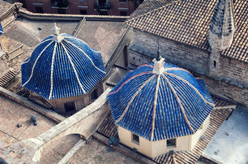 Aerial view domes of Cathedral in Valencia