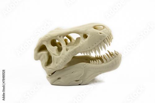 Poster 3D Printed Model Of A Dinosaur Skull