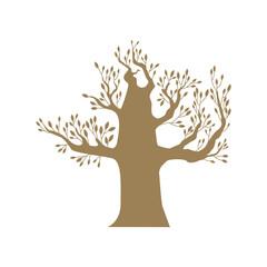 Brown big tree