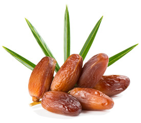 branch of date fruits