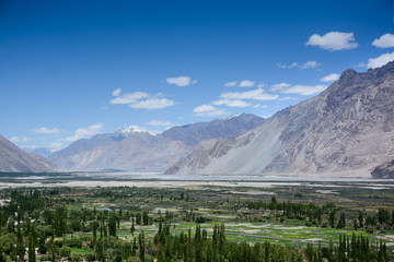 Nubra valley landscape