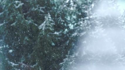 Snow Falling On Trees, Seen Through The Window