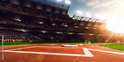 Professional baseball grand arena in sunlight - 78484906