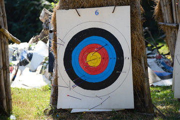 Archery target full with arrows.