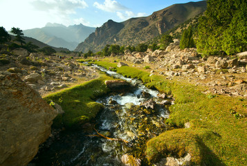 mountain river with green grass and high rocks