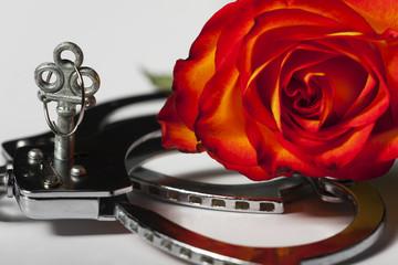 Handschellen mit einer Rose