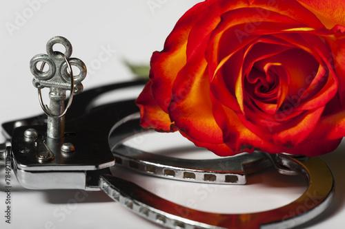 canvas print picture Handschellen mit einer Rose