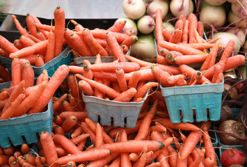 farm carrots