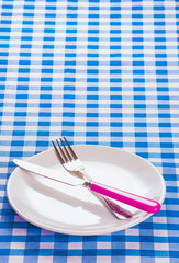 Cutlery on blue checked tablecloth