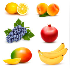 Big group of different fruit. Vector.