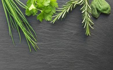 frische grüne Küchenkräuter auf Schiefertafel