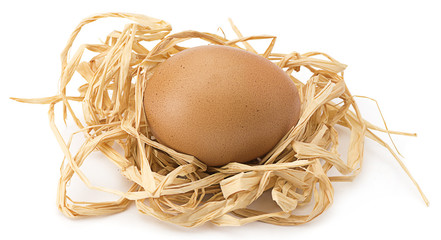 Organic egg in the nest isolated on white background.
