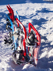 Snowshoes on snow.