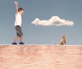 little boy walking in balance on a wall