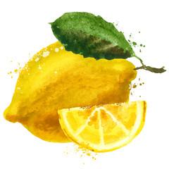 fruit vector logo design template. food or lemon icon.