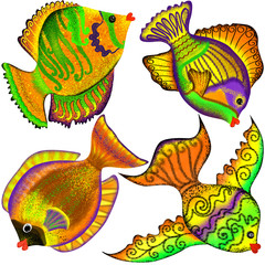 4 fantasied  tropical fish on a white background