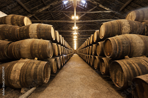 Papiers peints Con. ancienne Wine cellar, Porto