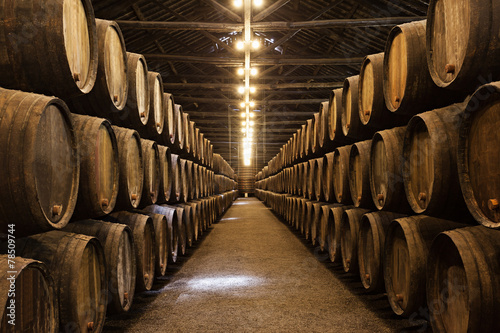 canvas print picture Wine cellar, Porto