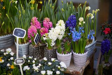 Outdoor flower shop in Paris
