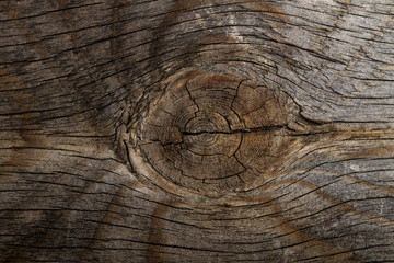 Horizontal Wooden background with Knot out