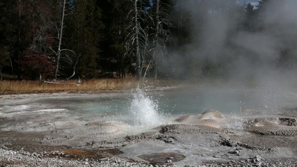 geyser in Yellowstone national park, USA