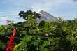 Volcan Arenal au loin - Costa Rica