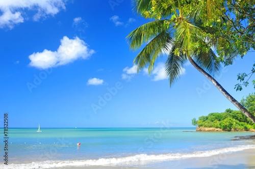 Papiers peints Caraibes Tropical beach