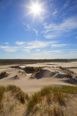 Danimarca,Skagen,Rabijerg Mile, dune di sabbia.
