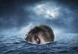 Human head in the sea