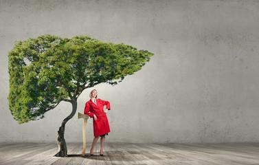 Problem of deforestation!