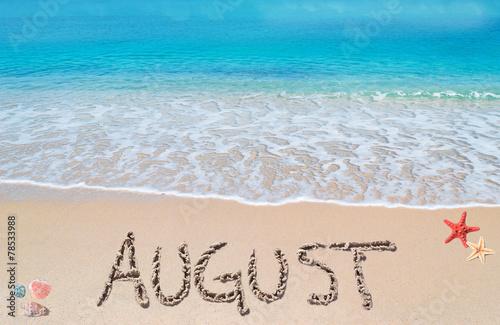 august on a tropical beach