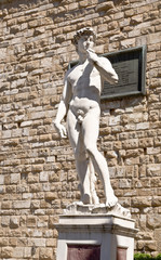 A copy of the statue of David by Michelangelo, in Florence