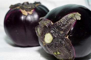 Eggplant purple
