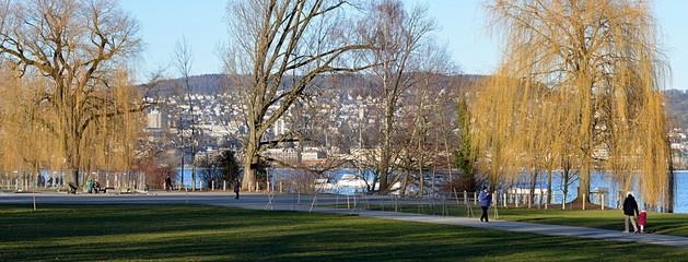jardin public zurichois