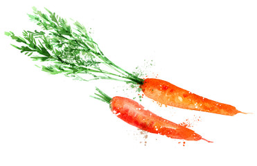 carrot vector logo design template. vegetable or food icon.