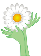 Hands in the shape of flower