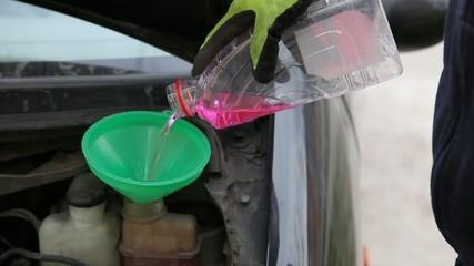 Automotive, car servicing, mechanic pouring fresh antifreeze