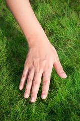 Woman hand over green grass